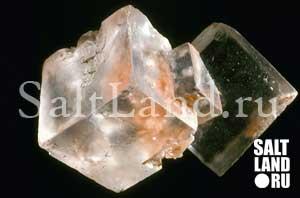 Кристалл соли. Галит.