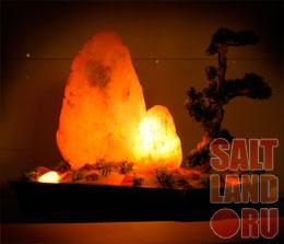 Солевая лампа с декоративным растением