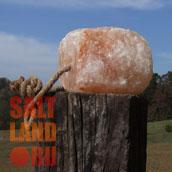 Соляной лизунец висит привязанный к столбу