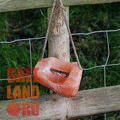 Ограда и подвешенный на ней лизунец